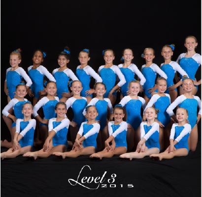 Level 3 2015
